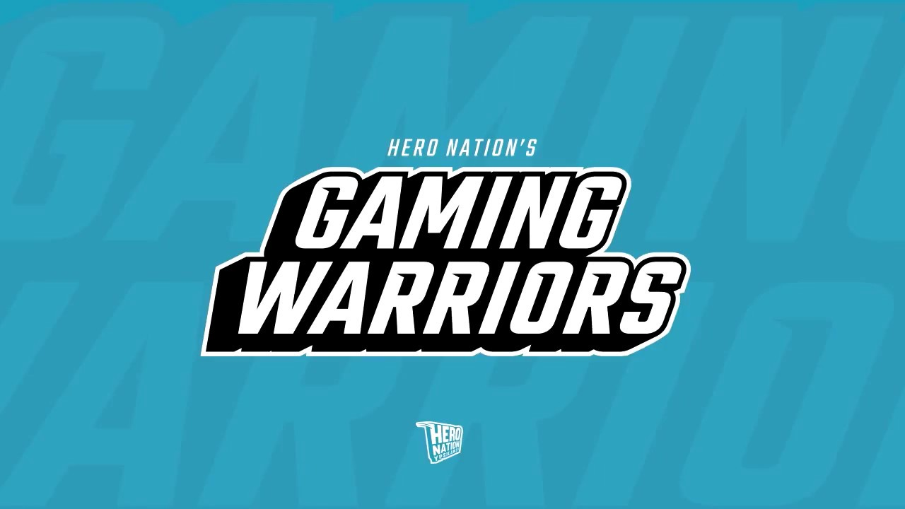 gaming warriors