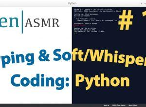 Typing & Soft/Whisper: Coding:Python