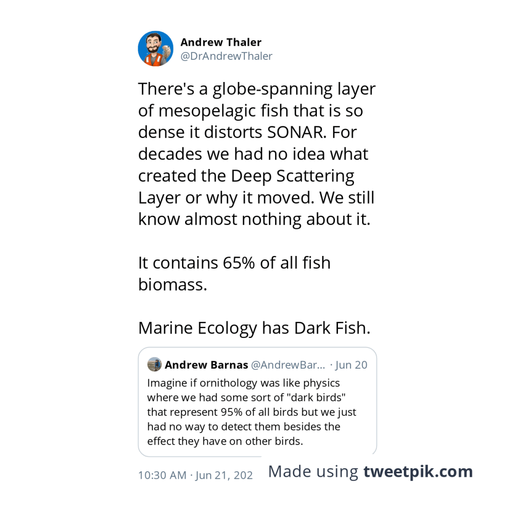 There's a globe-spanning layer of mesopelagic fish that is so dense it distorts SONAR. For decades we had no idea what created the Deep Scattering Layer or why it moved. We still know almost nothing about it.  It contains 65% of all fish biomass.  Marine Ecology has Dark Fish.